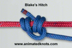Common_Knot_blake