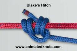 Common_Knot_blake