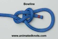 Common_Knot_boweline