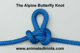 Common_Knot_butterfly