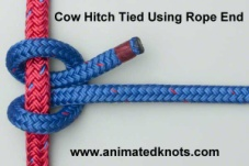 Common_Knot_cowhitch