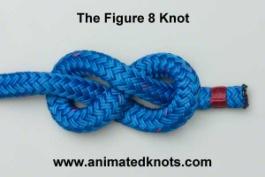Common_Knot_figure8