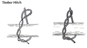 Common_Knot_timber